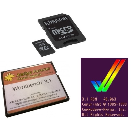 SD 16GB - Workbench 3.1 - Kickstart 3.1 kit